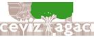 Kurumsal Ceviz Ağacı Web Sitesi